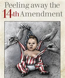 Born in Despotism the 14th Amendment